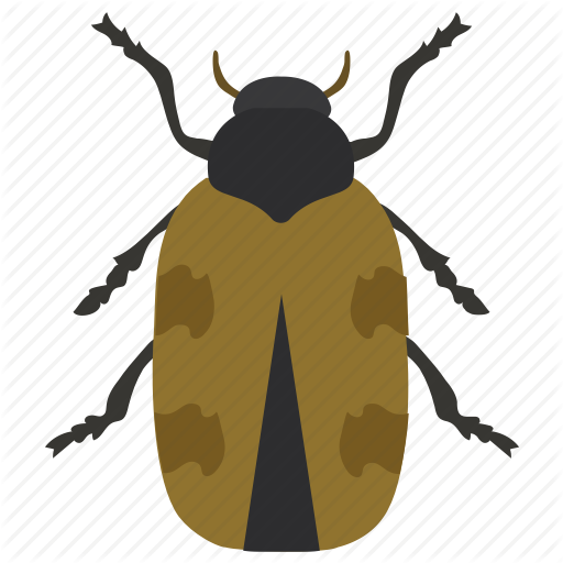 Dung Beetle, Insect, Japanese Beetle, Prejudicial Insect, Scarab