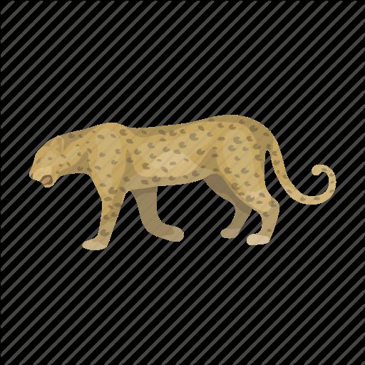 Animal, Cat, Cheetah, Leopard, Predator, Wild Icon