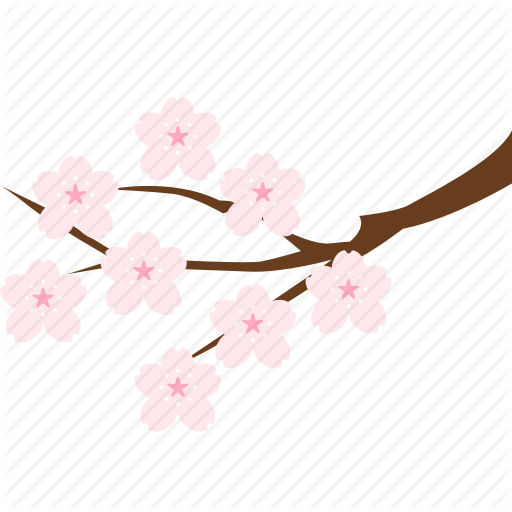 Cherry Blossom Branch Png Images In Collection