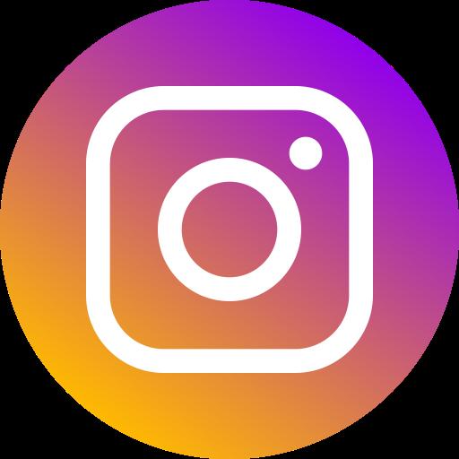 Circle, Instagram, Logo, Media, Network, New, Social Icon