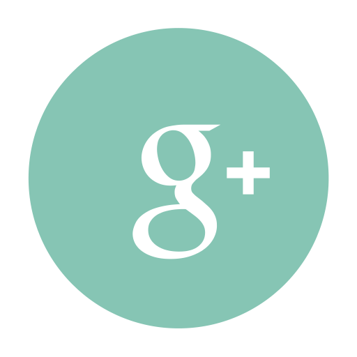 Google Plus Red Logo Png Images