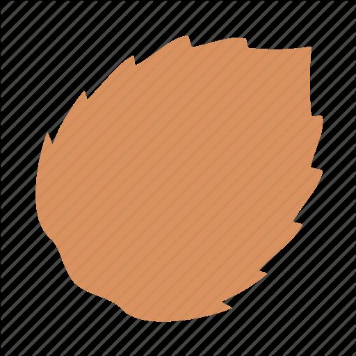 Coco, Coconut Icon