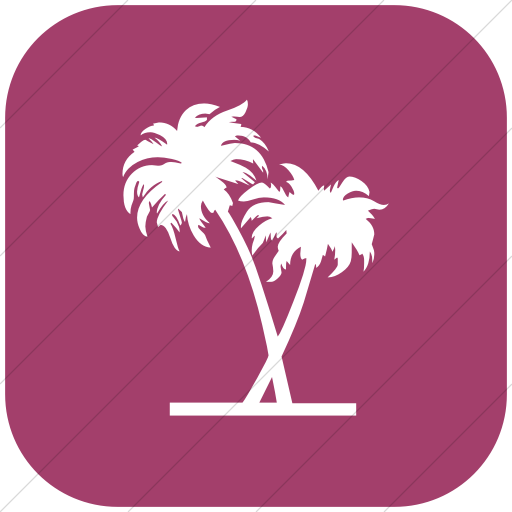 Flat Rounded Square White On Pink Classica Palm Trees