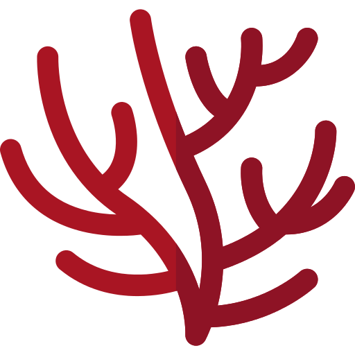 Coral Png Icon