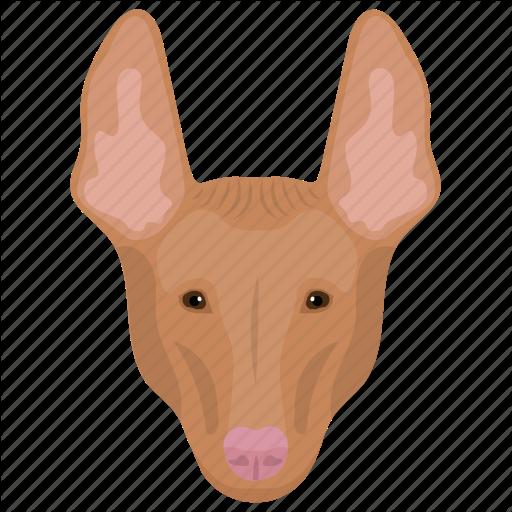 Animal, Cattle Dog, Dog, Pembroke Welsh, Welsh Corgi Icon