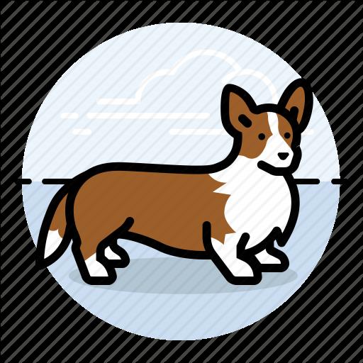 Corgi, Dog, Show Icon