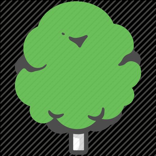 Beech, Beech Tree, Branch, Nature, Oak, Plant, Tree Icon