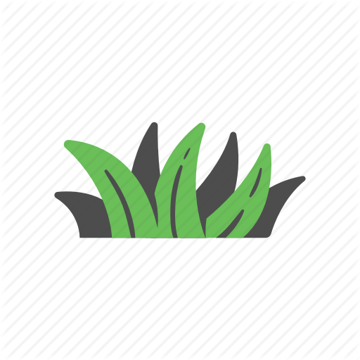 Botany, Ecology, Garden, Grass, Meadow, Nature, Plant Icon