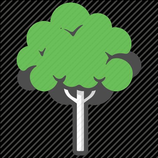 Forest, Garden, Mahogany, Mahogany Tree, Nature, Park, Tree Icon