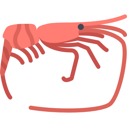 Collection Of Free Shrimp Vector Gambar Download On Ui Ex