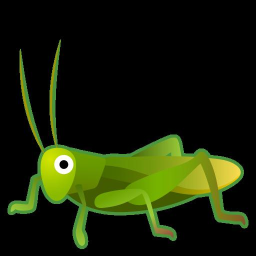 Cricket Icon Noto Emoji Animals Nature Iconset Google