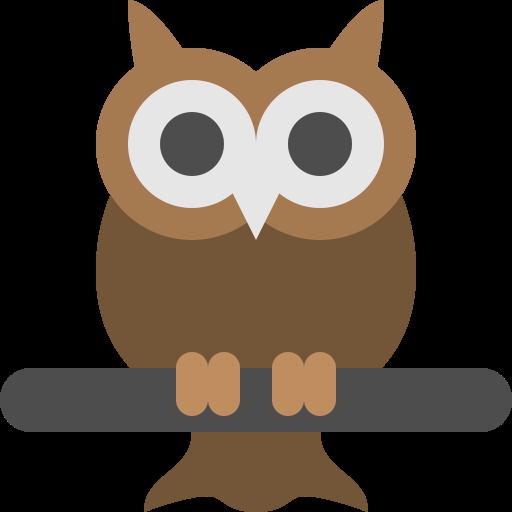 Big, Bird, Eyes, Night, Owl, Vision, Wild Icon Places To Visit