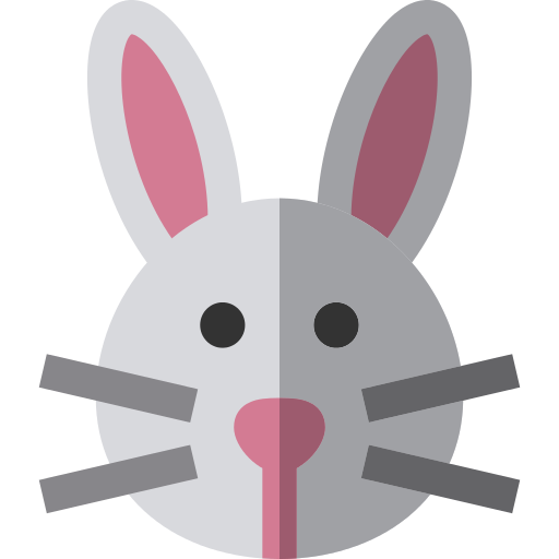 Bunny Png Icon