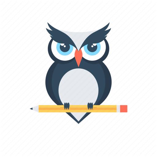 Bird Education Owl Wisdom Icon