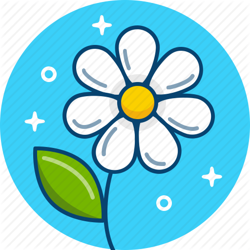 Camomile, Daisy, Flower, Spring Icon