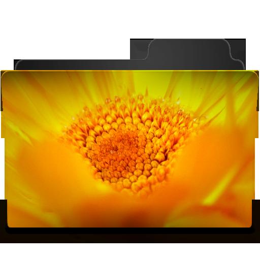 Flowers Yellow Icon