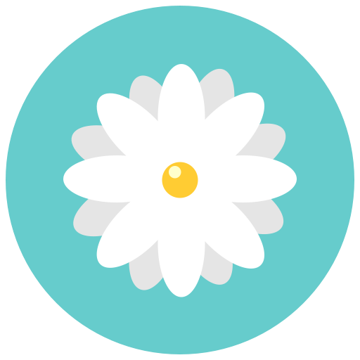 Flowers, Aroma, Chamomile, Blossom, Flower, Daisy, Nature Icon