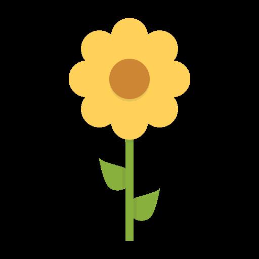 Flower, Nature, Petals, Blossom, Daisy, Botanical Icon