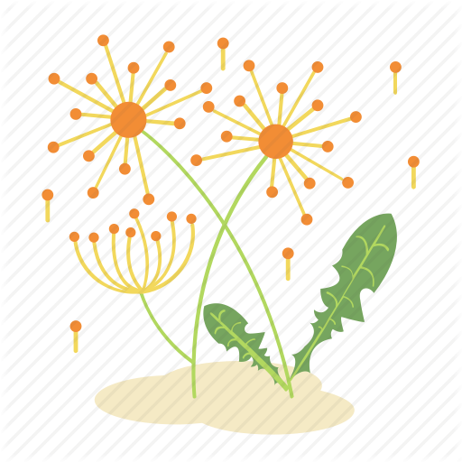 Dandelion, Floral, Flower, Forest, Garden, Nature, Plant Icon