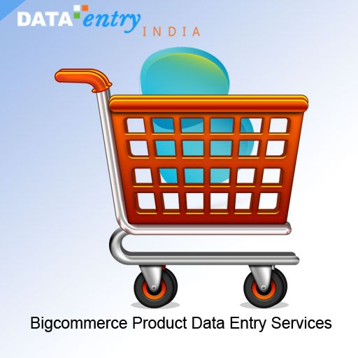 Data Entry Offers Bigcommerce Catalog Processing