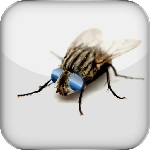 App Insights Jumifly