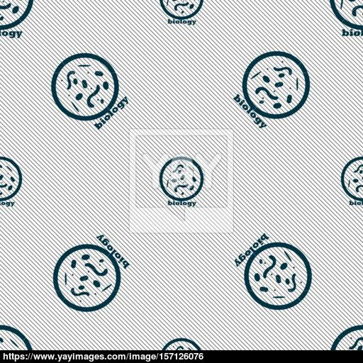 Bacteria And Virus Disease, Biology Cell Under Microscope Icon