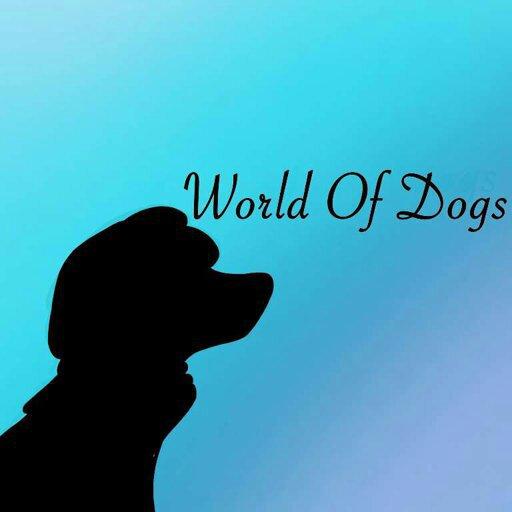 Latest World Of Dogs Amino