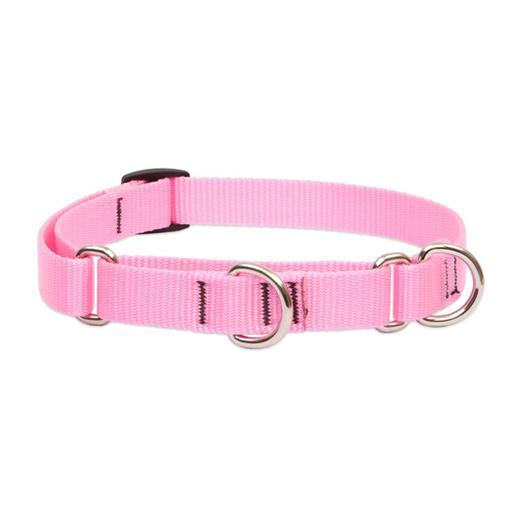 Lupine Pet Basics Martingale Collar, Medium Dog Buymeonce Uk