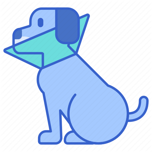 Cone, Dog, Dog Cone, Sick Dog Icon