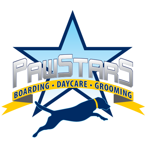 Pawstars Dog Boarding, Daycare Grooming In Jacksonville