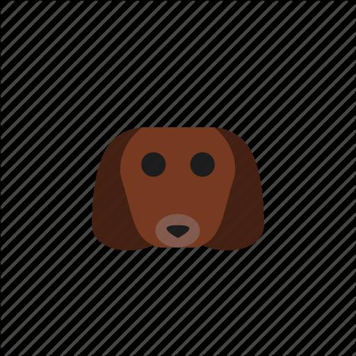 Animal, Animals, Dachshund, Dog, Head, Pet Icon