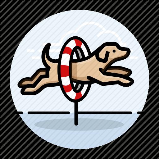 Agility, Do, Dog Icon