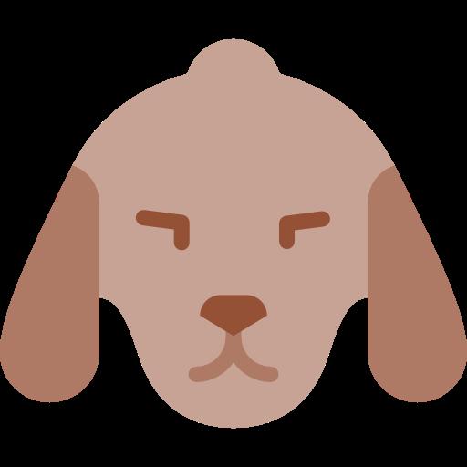 Pet, Animal Kingdom, Dog Icon