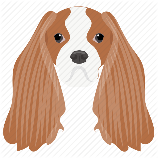 Afghan Hound, Badger Dog, Dachshund, Sausage Dog, Wiener Dog Icon