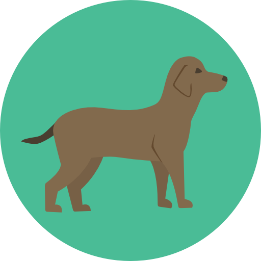 Animal, Dog, Pet, Animals, Mammal, Breed Icon