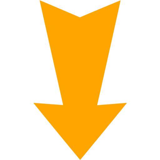 Orange Arrow Down Icon