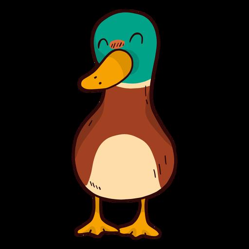 Cute Duck Drake Wild Duck Beak Flat