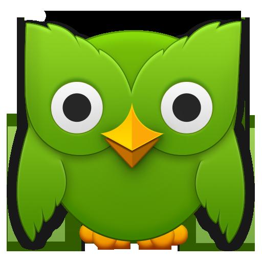 E Learning Tool Duolingo Laura Lionetti