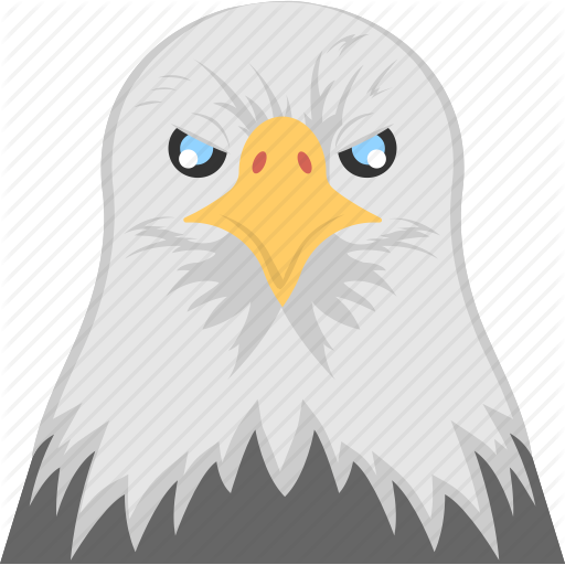 Animal, Eagle Head, Fierce Bird, Hawk Eye, White Eagle Face Icon