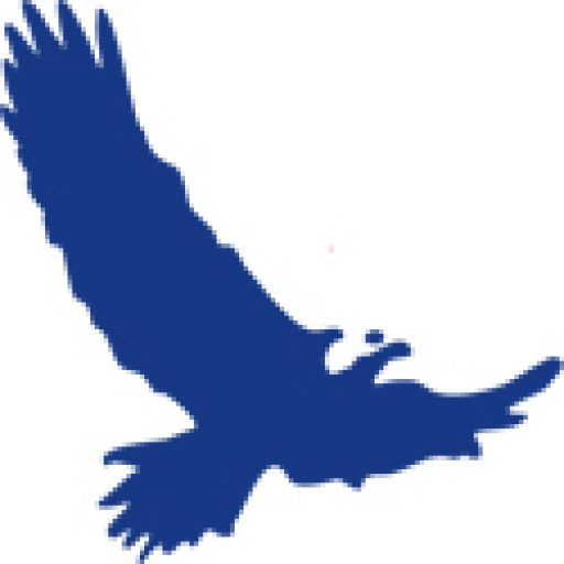 Cropped Map Icon Eagle