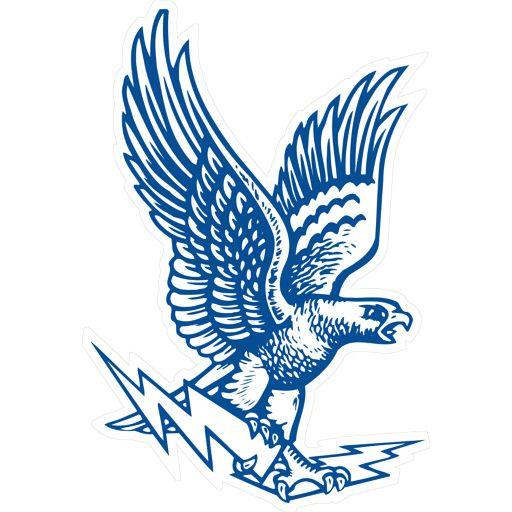 Air Force Falcons Falcon Logo