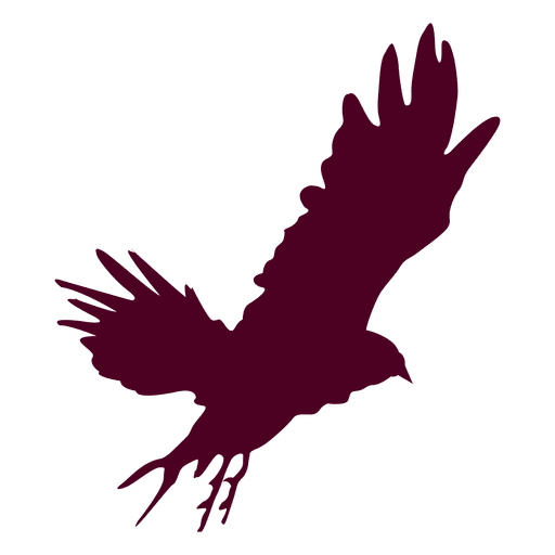 Eagle Flying Sequence