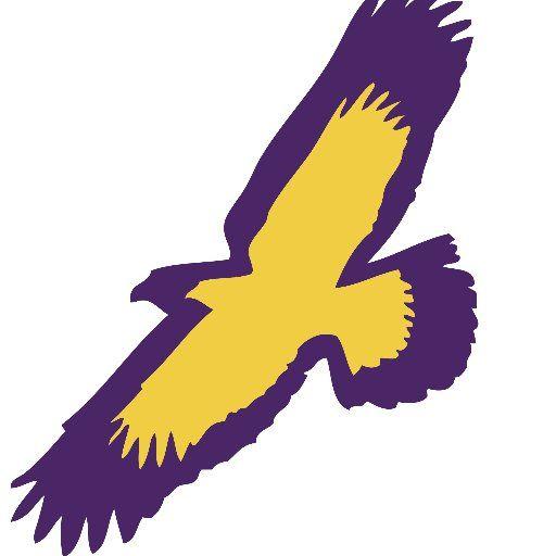 Elmira College Soaring Eagles Logos