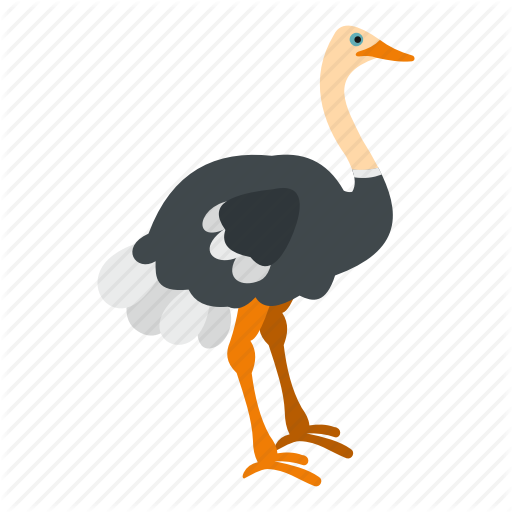 Animal, Beak, Bird, Emu, Feather, Nature, Ostrich Icon