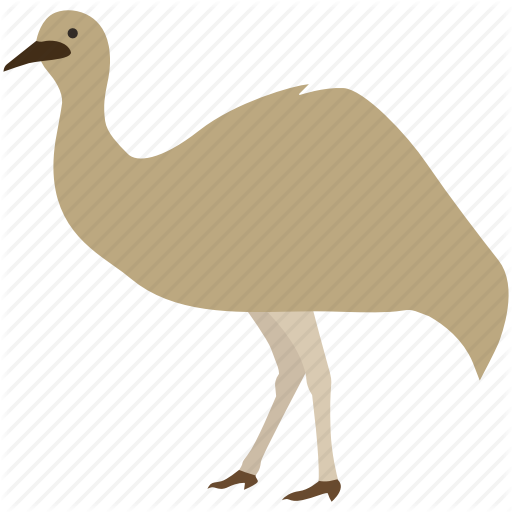 Australia, Australian, Bird, Emu, Flightless, Large, Rhea Icon