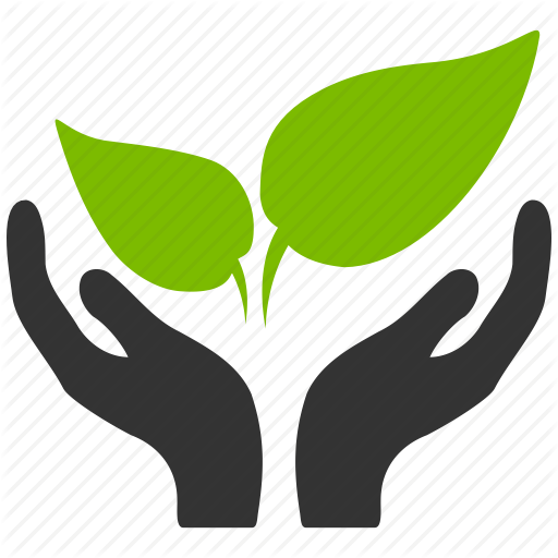 Image Environment Free Icon