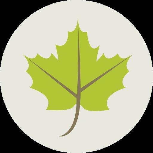 Plant, Leaf, Nature, Garden, Maple Leaf, Botanical, Ecology