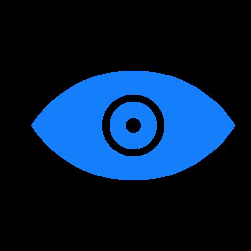 Eye Outline Black Icon