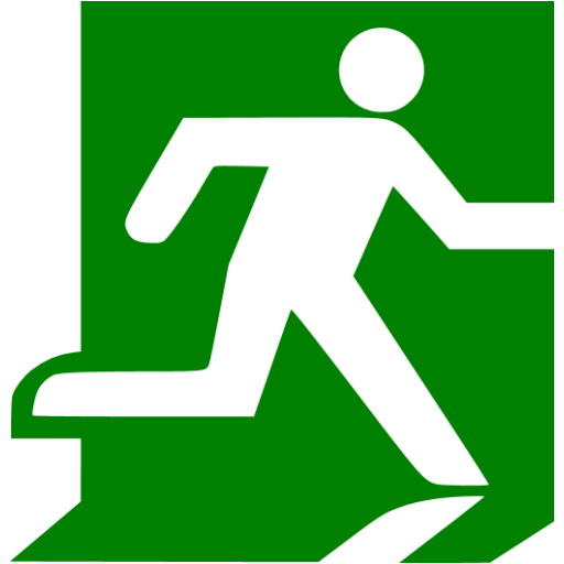 Green Exit Icon