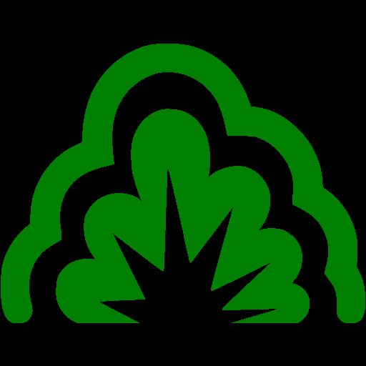 Green Smoke Explosion Icon